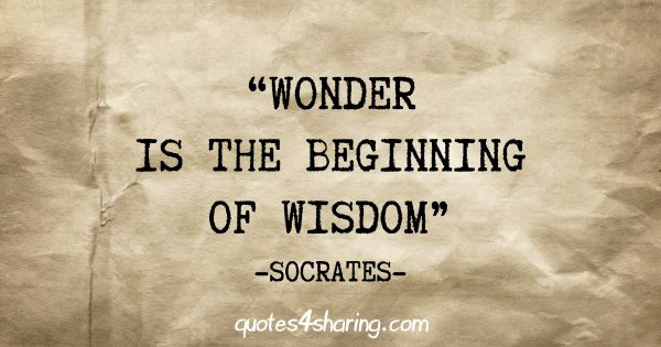 """Wonder is the beginning of wisdom"" - Socrates"