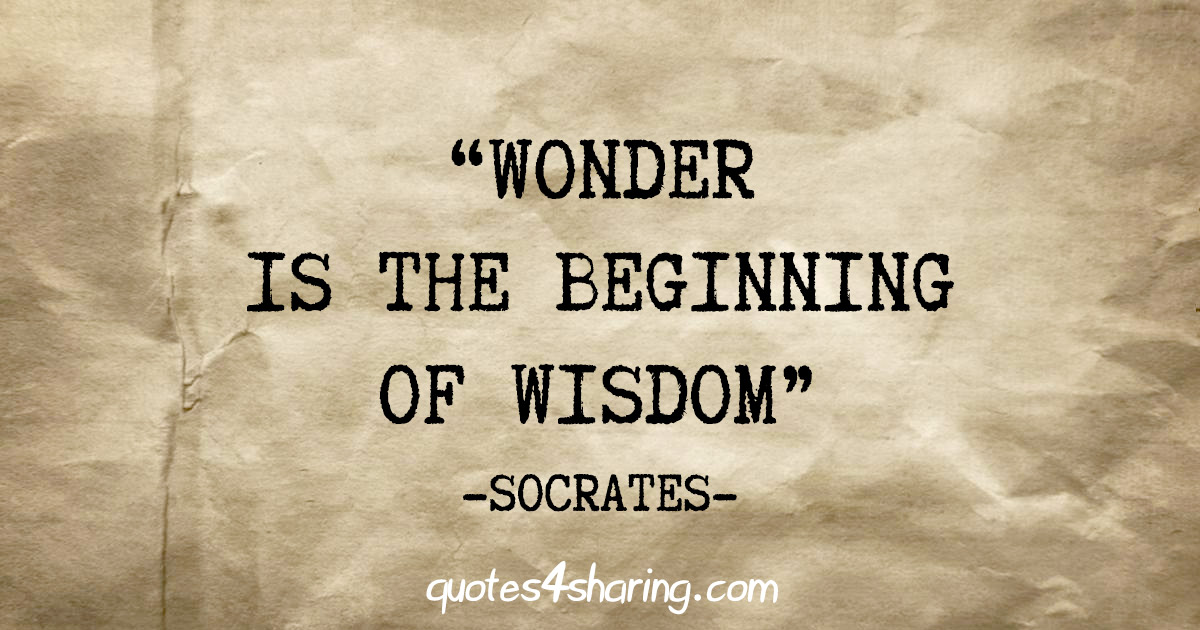 """Wonder is the beginning of wisdom"" - Socrates"