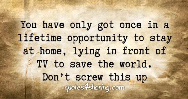 You have only got once in a lifetime opportunity to stay at home, lying in front of TV to save the world. Don't screw this up