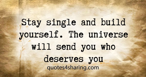 Stay single and build yourself. The universe will send you who deserves you